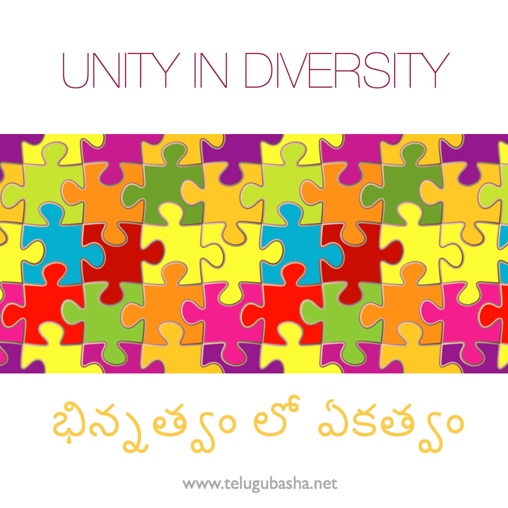 unity v pluralism The following discussion first depicts the possible meanings of religious pluralism, and then goes on to explain the teaching of the transcendent unity of religion it concludes with the implications of this confrontation.